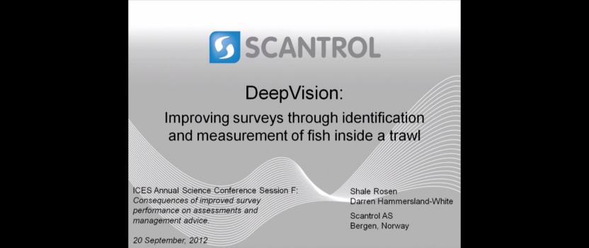 Deep Vision presented at ICES 2012
